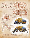 ElderScrolls Online: Shalk