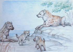 four hyenas by Asceline
