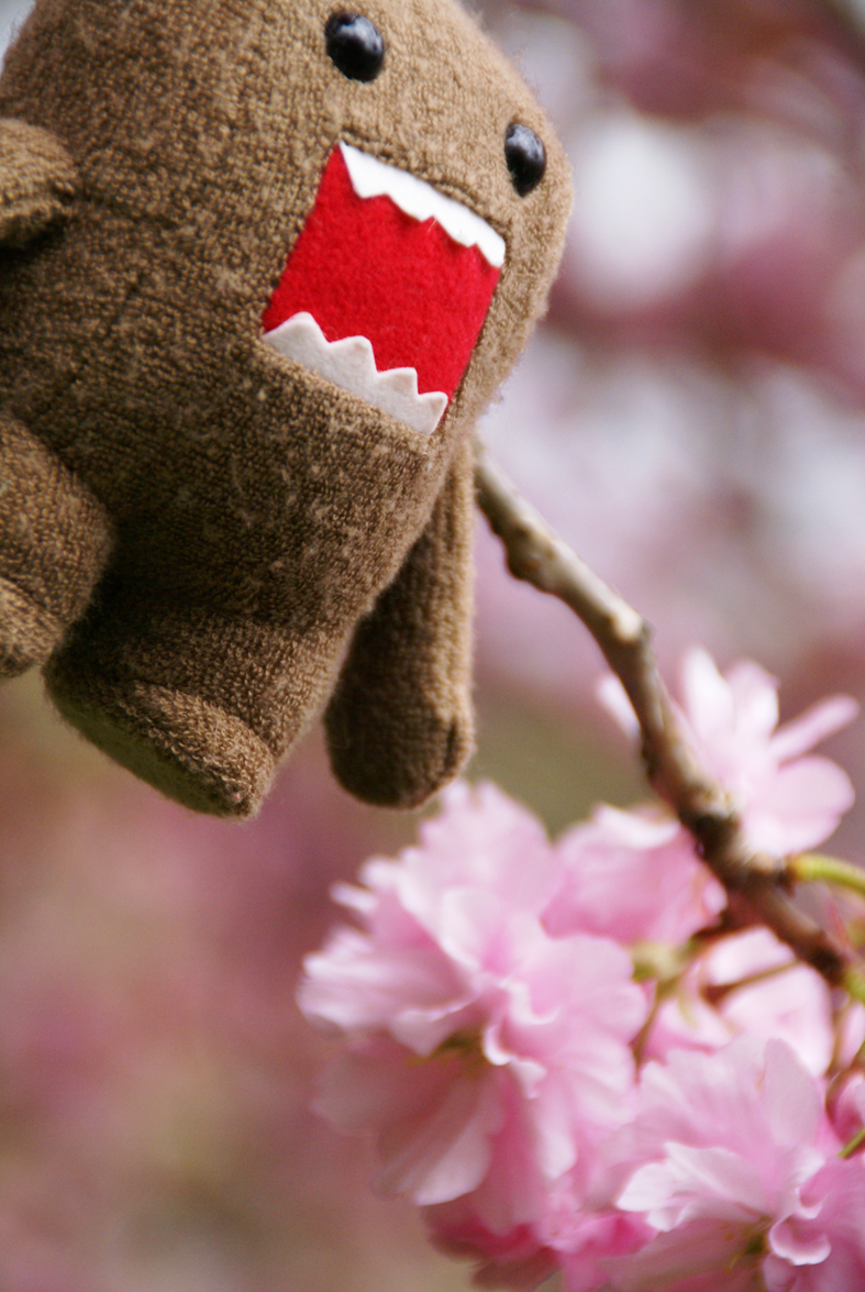 domo-kun + blossoms 1 by RevaMissP1ss