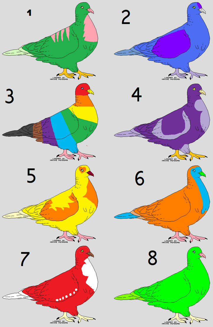 pigeon adopts by Mimimizukikudo