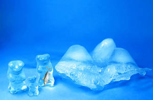The Polar Bear Family by dorukkirezci