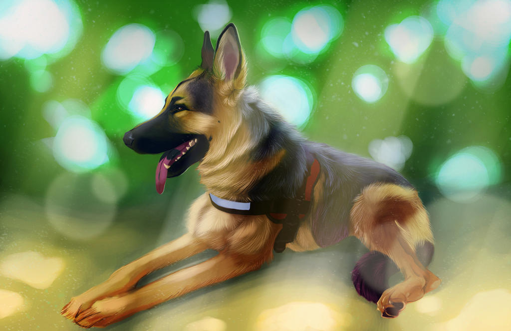 Commission for Angela-Sparkle by Followthepaws
