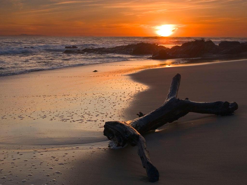 idée Photos ! Beach_by_Neil_Claydon