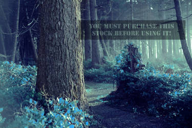 The Forest Whispers Blue Stock