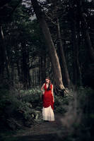 Red in the Woods by TEMPERATE-SAGE