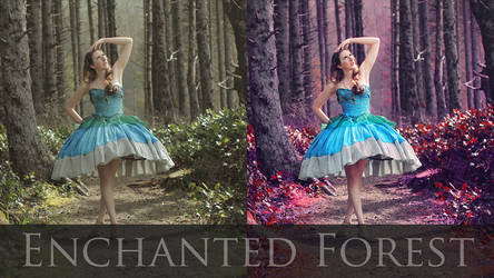 Enchanted Photo Retouch Tutorial (link below)