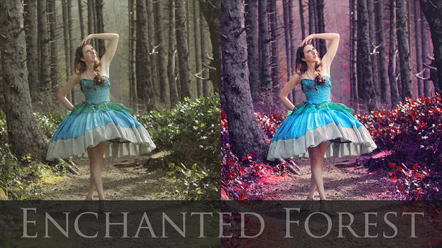 Enchanted Photo Retouch Tutorial (link below)