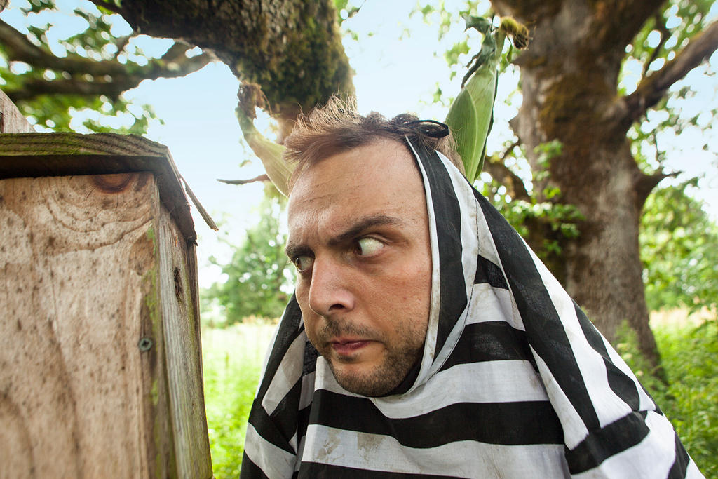 Little Birds Beware by Temperate-Sage