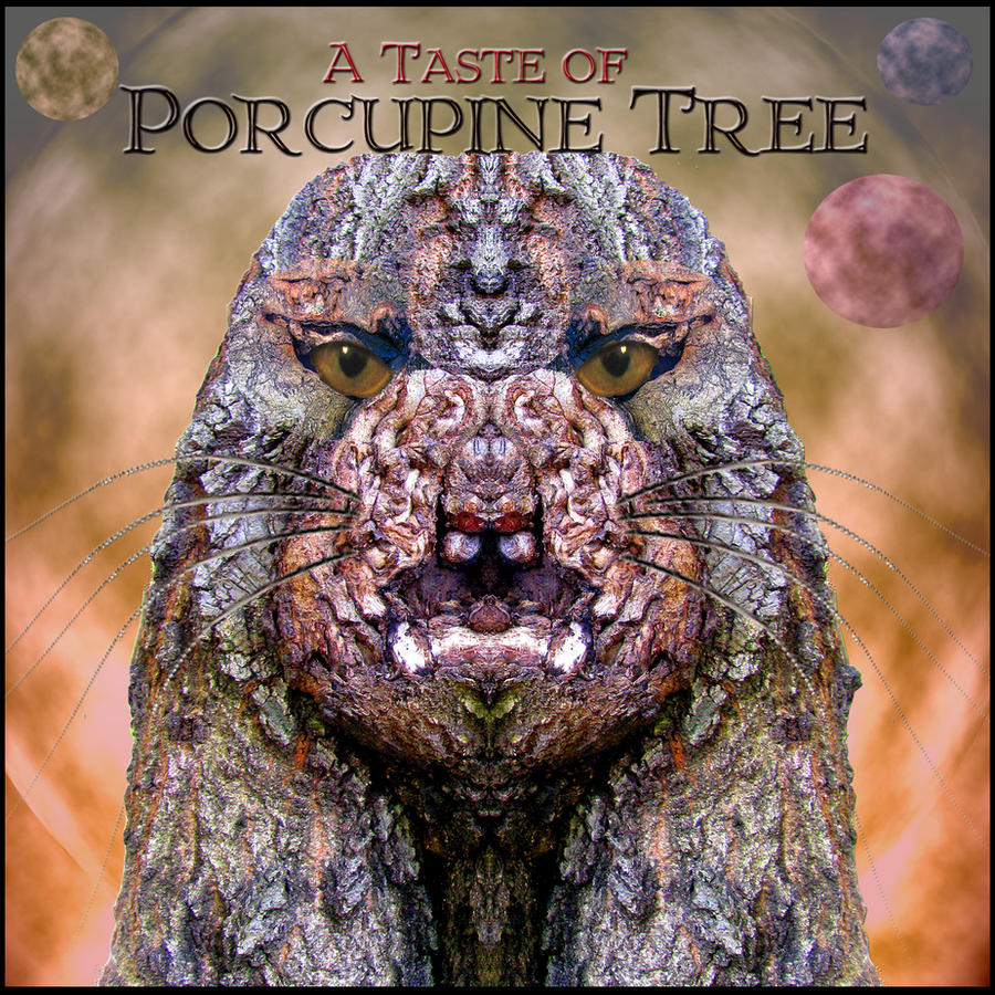 porcupine chat sites Deviantart is the world's largest online social community for artists and art enthusiasts, allowing people to connect through the creation and sharing of art.