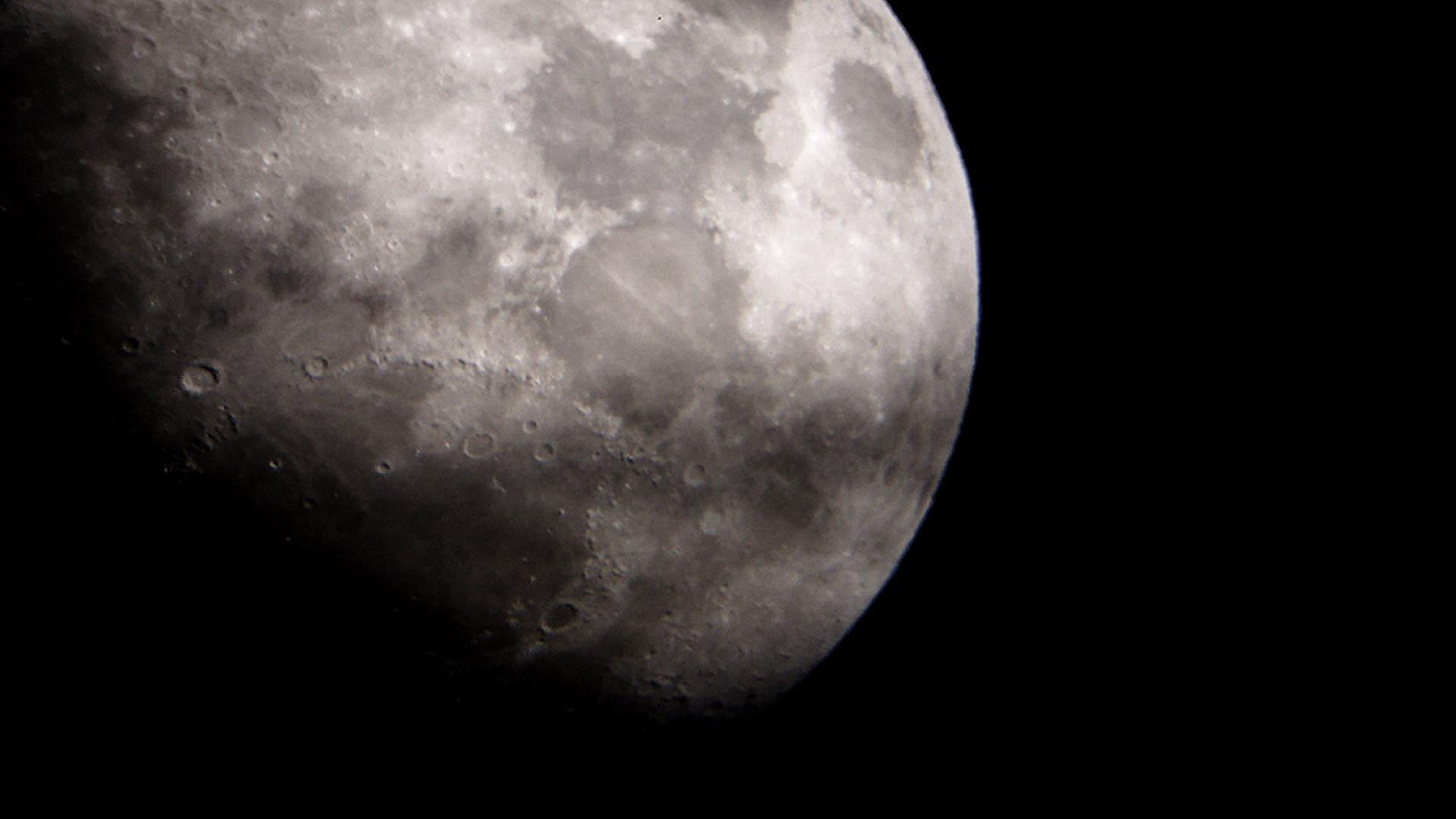 moon by Wartydeathcap