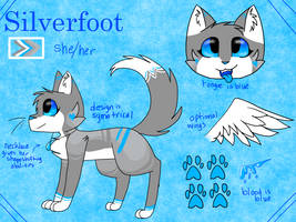 Silverfoot Redesign 2018