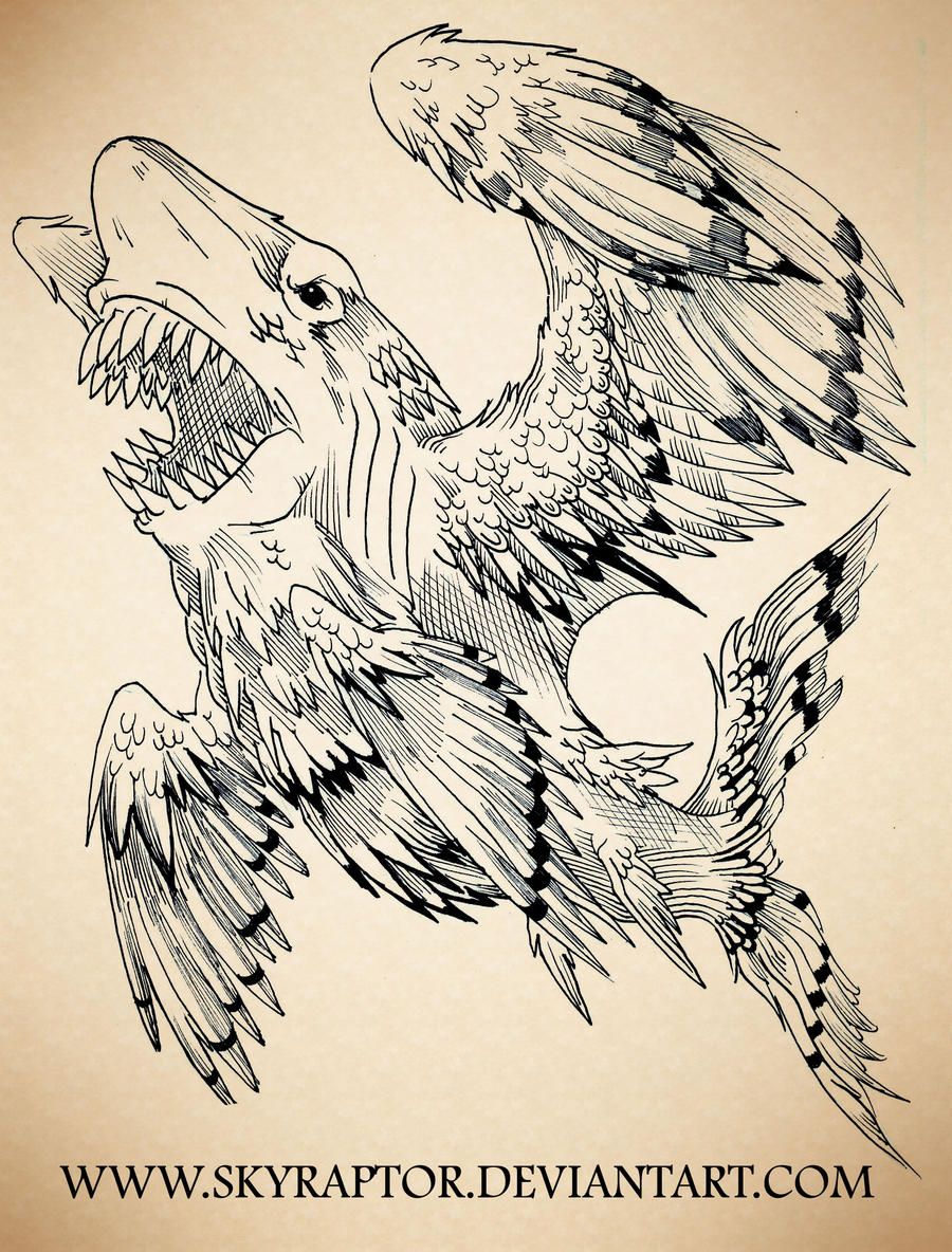 - Great White of the Sky - by skyraptor