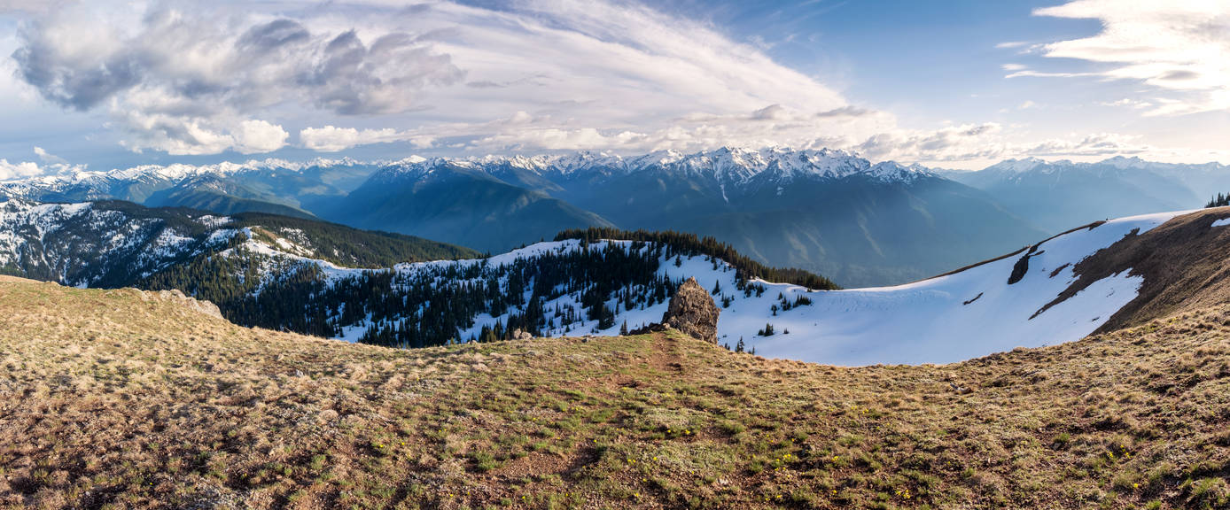 Hurricane Ridge by eegariM