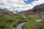 Alpine Runnel
