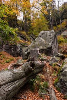 Climbing Site