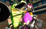 Were the Chaotix!