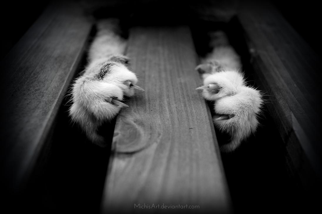 Souvenirs d'une vie lointaine [Épreuve n°3] -Déconseillé aux âmes sensibles et aux orthographophiles- The_death_will_come_by_michisart-d7rhkpp