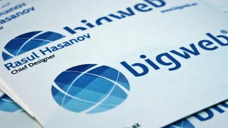 BigWeb Business Card by rasulh