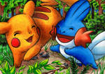 PKMN: Having Fun in the Forest