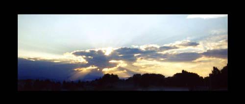 Sun Burst by VioletRosePetals