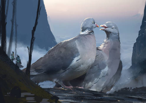 Pigeon Lords