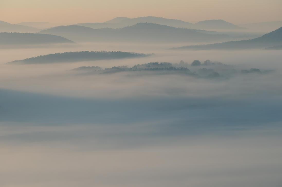 Winter Fog by blu-eis