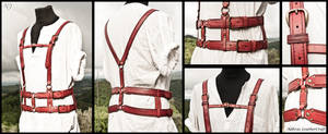 Red Leather Harness