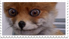 CreepyFoxStamp by DingoTK