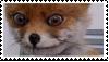 CreepyFoxStamp by DingoTK