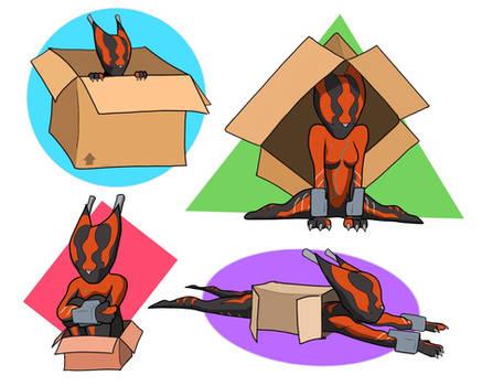 Valcat and box