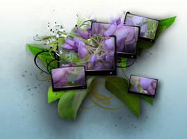 wisteria 2.0 by jc2600