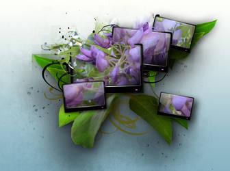 wisteria 2.0
