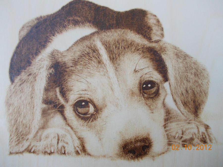 Sad puppy - Wood burning (pyrography art) by SherPic