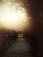 misty bridge by kouki1