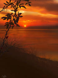Sunset by kouki1