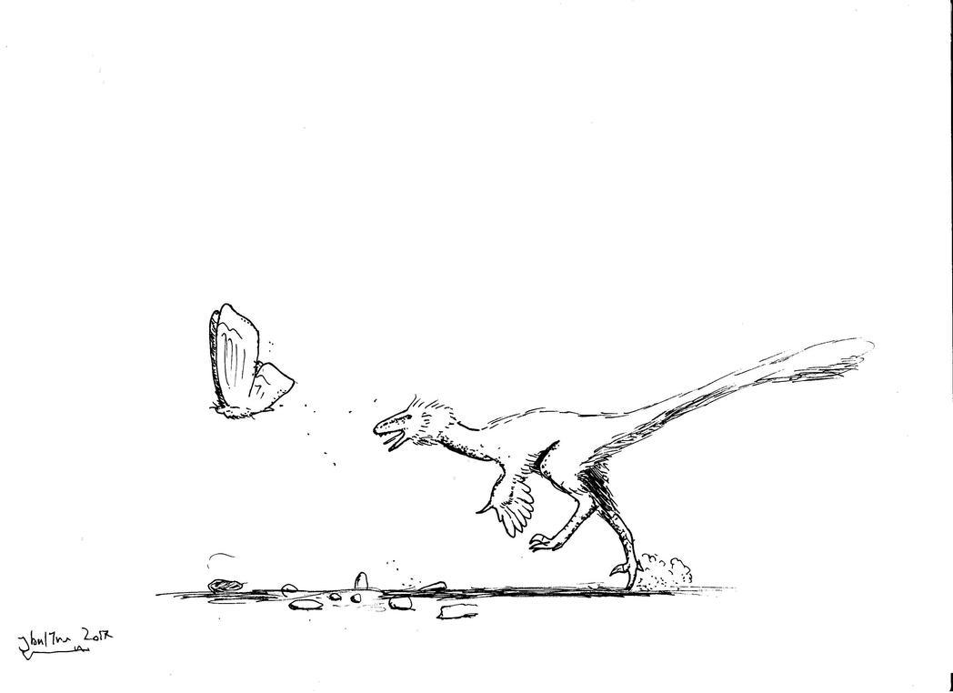 velicoraptor_chasing_butterfly_by_zanzal