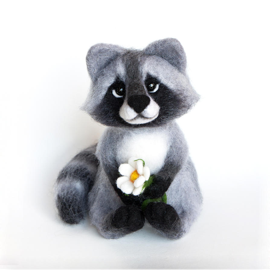 Racoon by znmystery