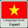 Vietnamese Expert by Kiriphorito