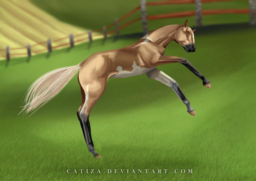 EquiBreak: Playtime by Catiza