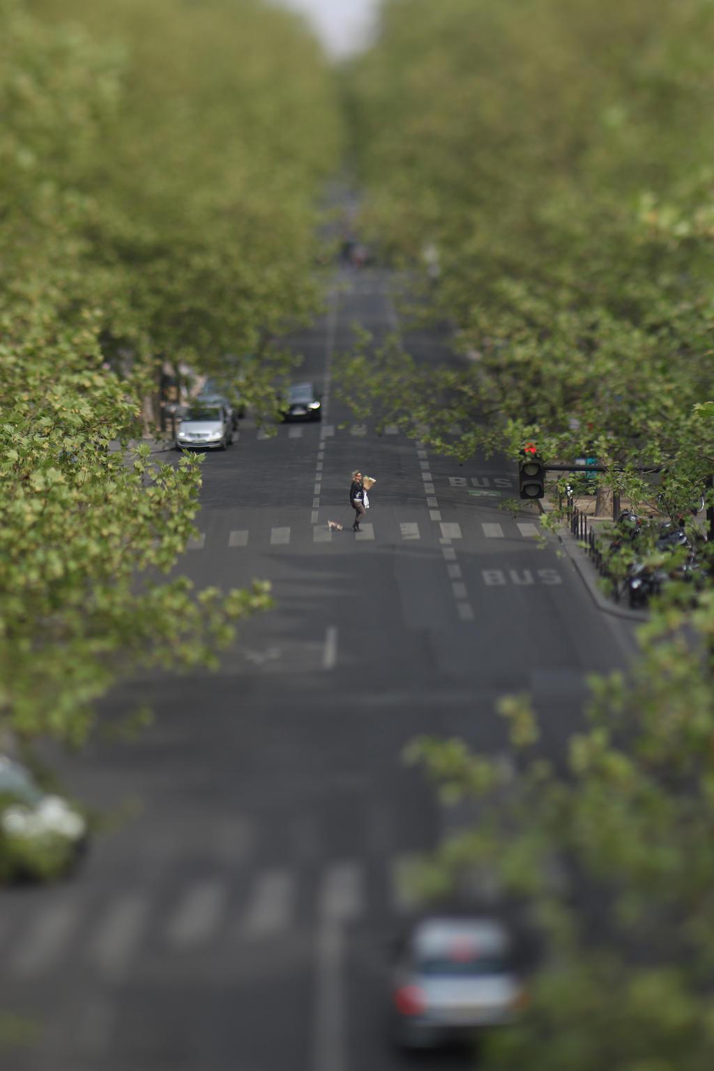 Pedestrian by lensenvy62