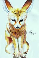 Fennec by dingo-murci