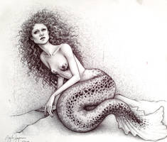 Little Mermaid by taylovestwilight
