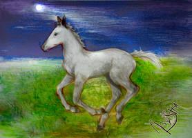 Moonlight Sonata by sineddine