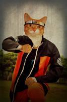 My cat, Naruto by BradleyBlazed