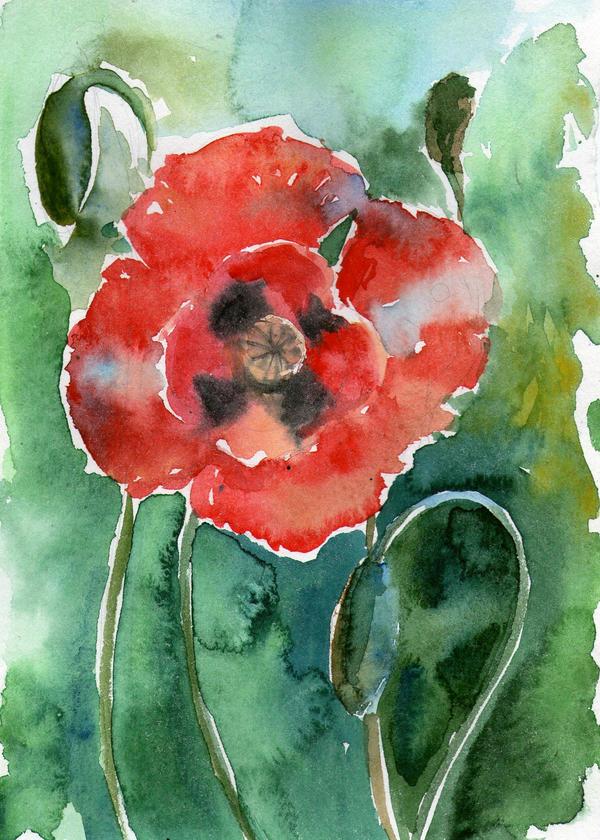 Poppy by ShastinaHell-N