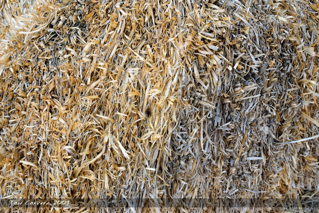 Rural Textures No. 2 by outlyer