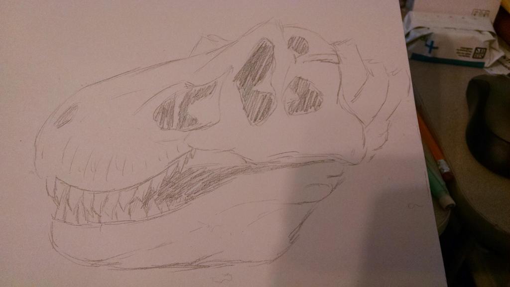T-Rex Skull by Yumenoookami