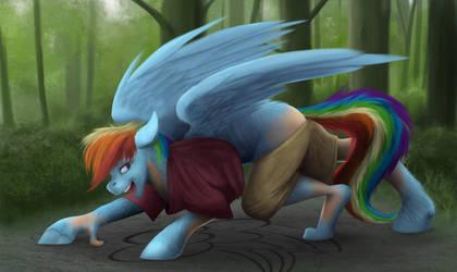 Rainbow Dash TF