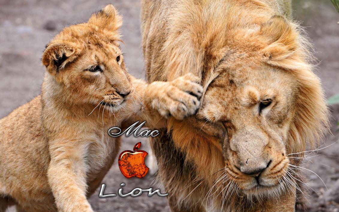 Great Wallpaper Mac Lion - mac_lion_wallpaper_by_kubines-d470xjg  Best Photo Reference_392111.png