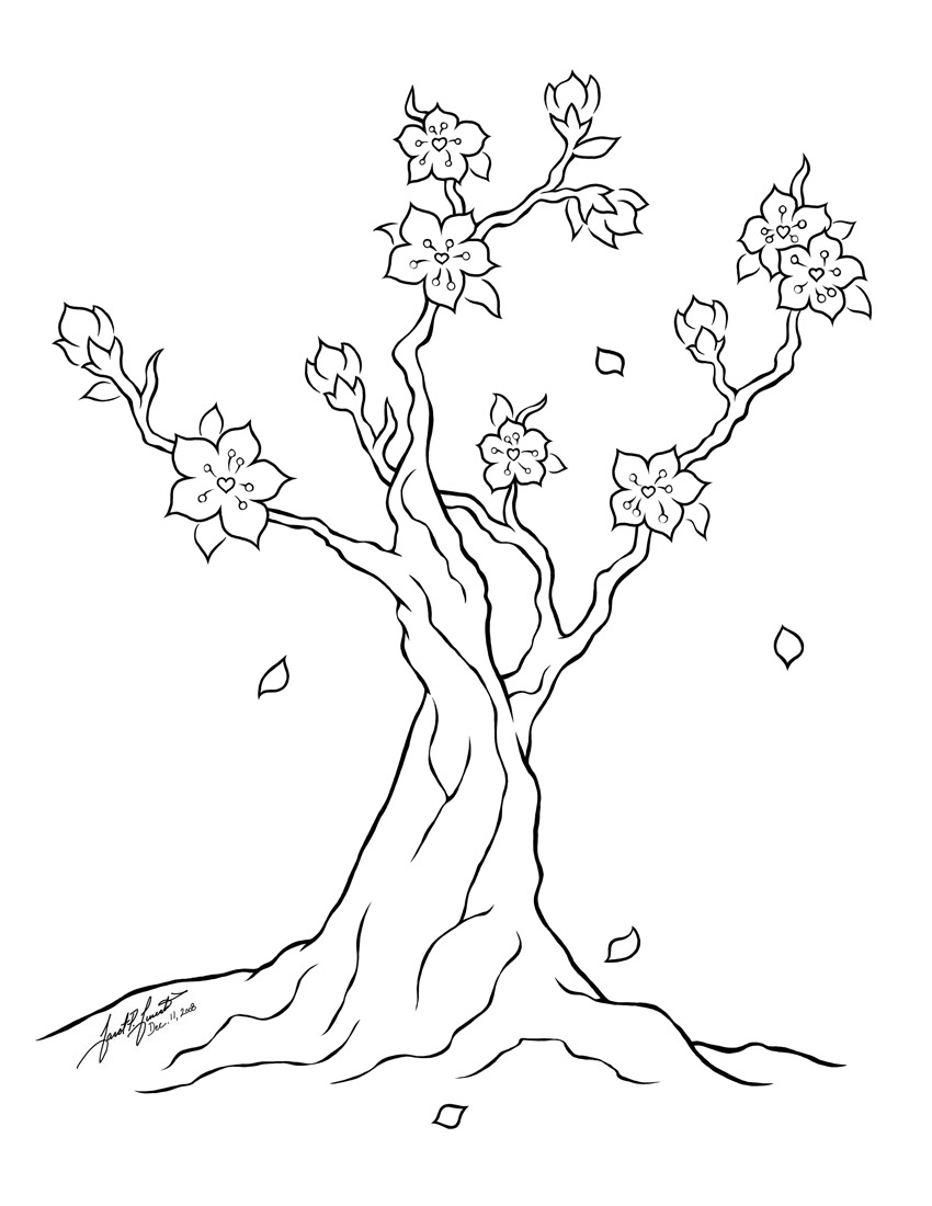 Flower Tree Line Drawing : Cherry blossom tree line art by pulsedragon on deviantart